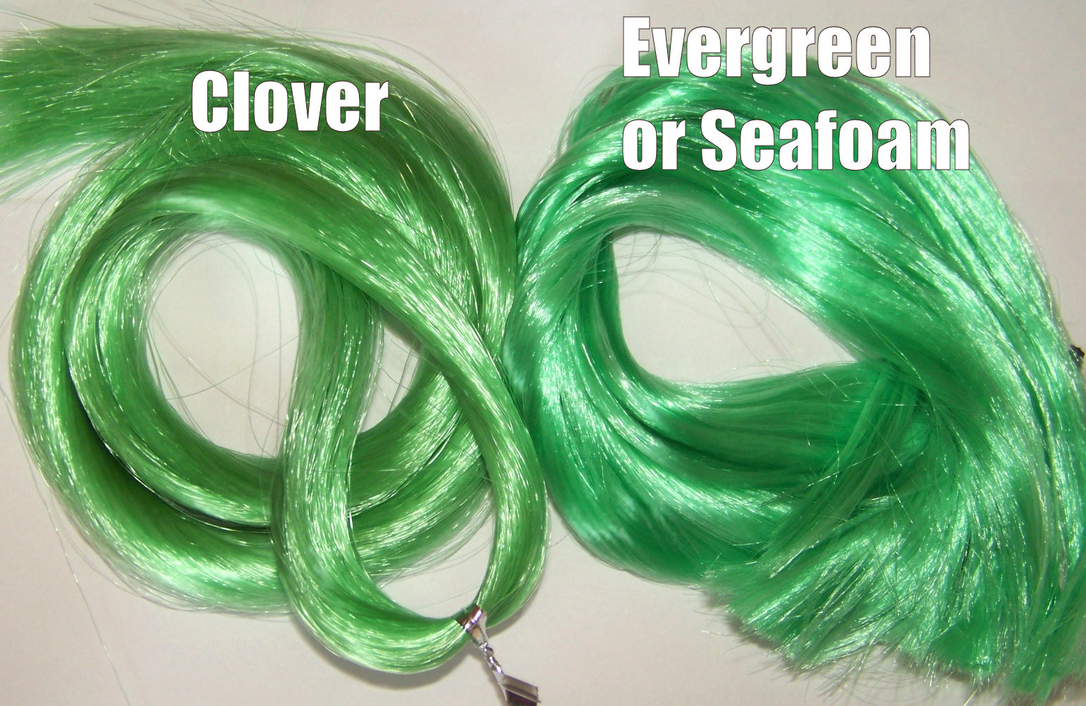 photo clover vs evergreen.jpg